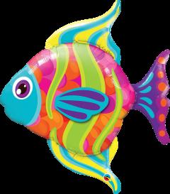 Maxi Fashionable Fish folija balon